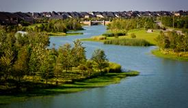 Natural Creek Restoration